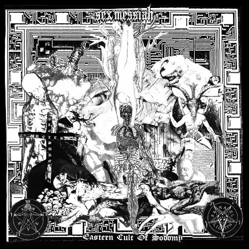 Black Metal Sex