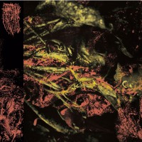 Hissing - Permanent Destitution - LP