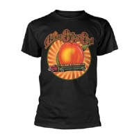 The Allman Brothers Band - The Peach Lorry - T-shirt