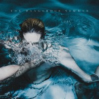 The Dangerous Summer - The Dangerous Summer - CD