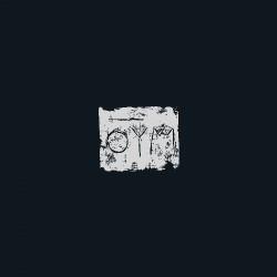 A Swarm Of The Sun - The Woods - CD DIGIPAK