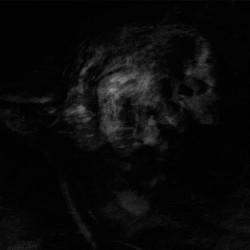 Adaestuo - Tacent Semitae - LP