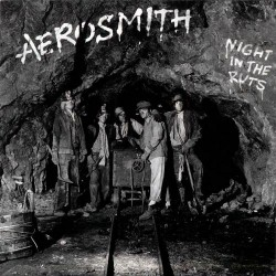 Aerosmith - Night In The Ruts - CD