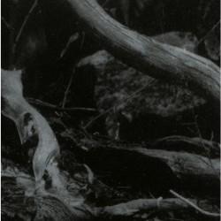 Barren Canyon - World Of Wounds - LP