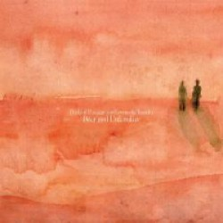 Birds Of Passage And Leonardo Rosado - Dear and Unfamiliar - LP Gatefold
