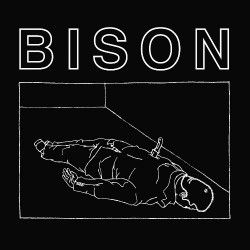 Bison - One Thousand Needles / Calm, Friendly And Euthymic - Mini LP