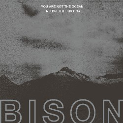 Bison - You Are Not The Ocean You Are The Patient - CD DIGISLEEVE