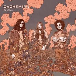 Cachemira - Jungla - LP