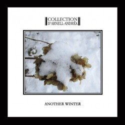 Collection d'Arnell-Andréa - Another Winter - CD DIGIPAK