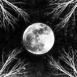 Corpus Christii - PaleMoon - LP Gatefold