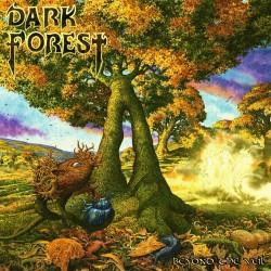 Dark Forest - Beyond The Veil - CD