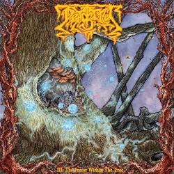 Deadbird - III : The Forest Within - CD DIGIPAK