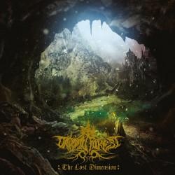 Druadan Forest - The Lost Dimension - LP