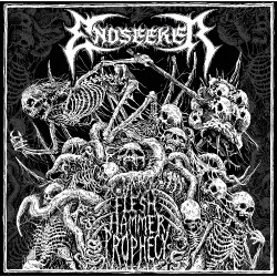 Endseeker - Flesh Hammer Prophecy - LP + DOWNLOAD CARD