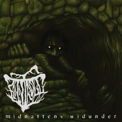 Finntroll - Midnattens Widunder - LP