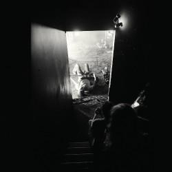 Metz - Automat - CD