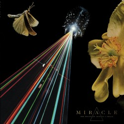 Miracle - The Strife Of Love In A Dream - CD