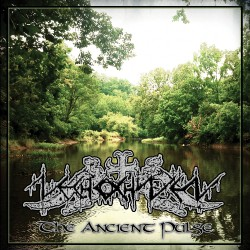 Nechochwen - The Ancient Pulse - CD