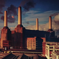 Pink Floyd - Animals - CD DIGISLEEVE