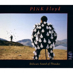 Pink Floyd - Delicate Sound Of Thunder - 2CD DIGISLEEVE