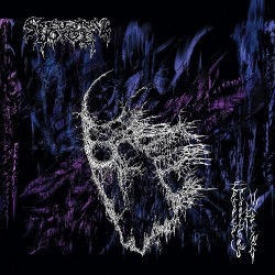 Spectral Voice - Eroded Corridors Of Unbeing - CD