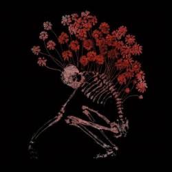 Tenhi - Folk Aesthetic - 3CD DIGIBOOK