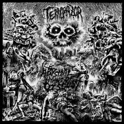 Terrorazor - Abysmal Hymns Of Disgust - CD