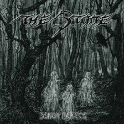The Stone - Zakon Velesa - CD