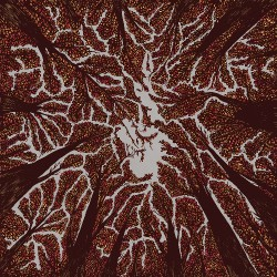 Trash Boat - Crown Shyness - LP COLOURED