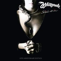 Whitesnake - Slide It In - DOUBLE LP