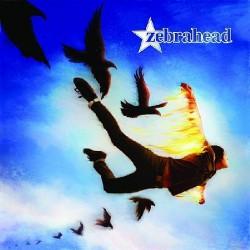Zebrahead - Phoenix LTD Edition - CD + DVD