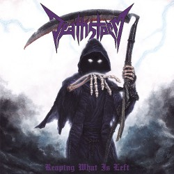 Deathstorm - Reaping What Is Left - CD