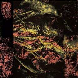 Hissing - Permanent Destitution - LP