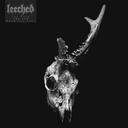 Leeched - You Took The Sun When You Left - LP COLOURED