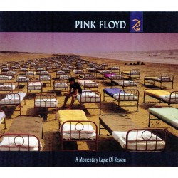 Pink Floyd - A Momentary Lapse Of Reason - CD DIGISLEEVE